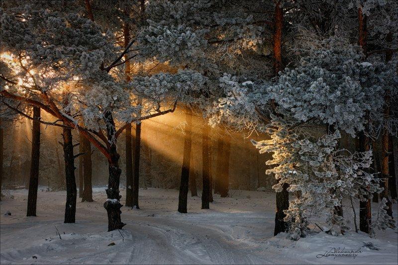 забайкальский край Зимняя сказкаphoto preview