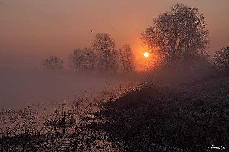 пейзаж,природа,рассвет,туман,мороз,иней Рассвет на озереphoto preview