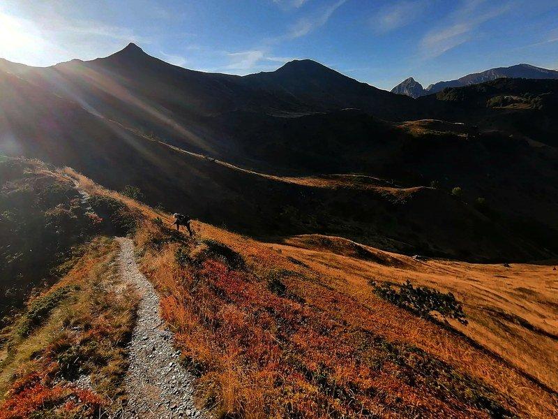 черногория, горы, montenegro Склоны Черногорииphoto preview