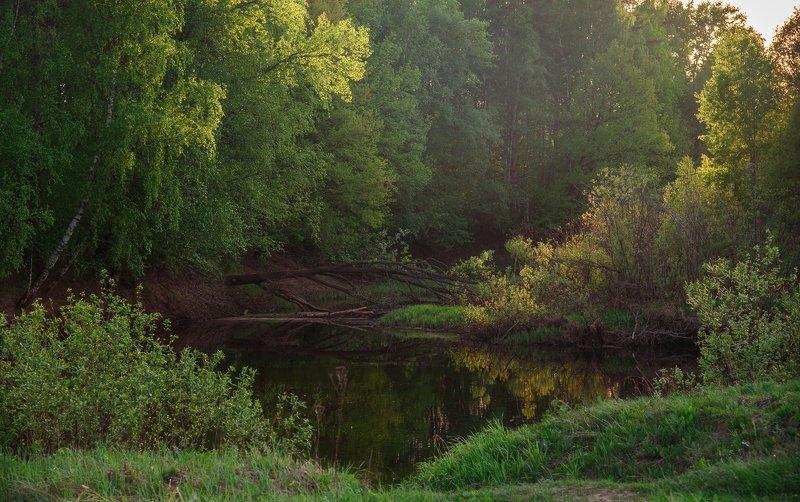 май, река, керженец, пейзаж Майский день на рекеphoto preview