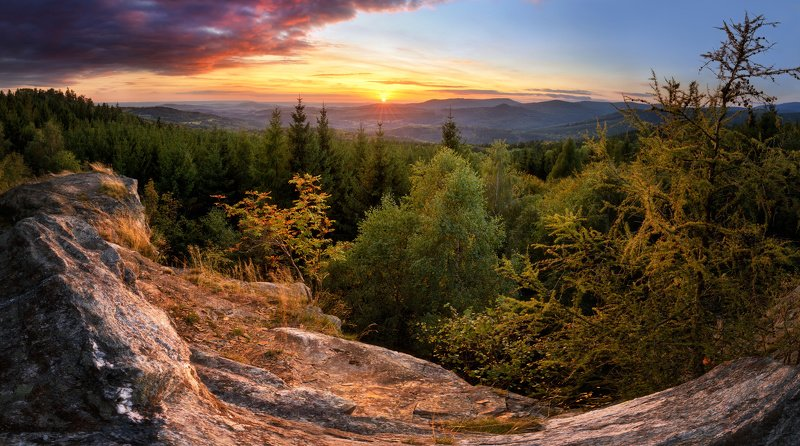 landscape, tree, sunset, panorama Evening at Ferdinandovphoto preview