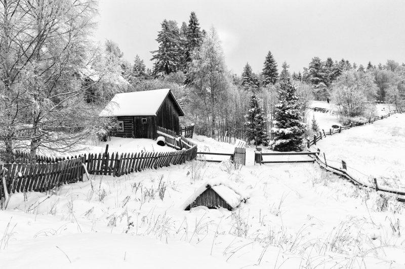 зима,черно-белое,карелия,деревня \