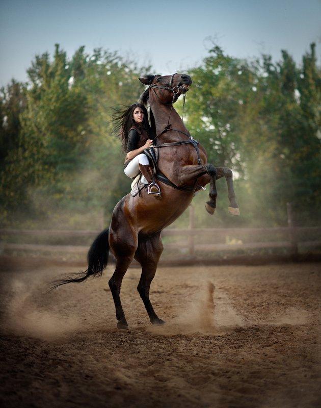 #лошадь#свеча# Свечаphoto preview