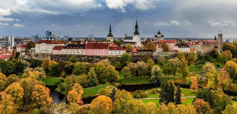 Осенний Таллинн.photo preview