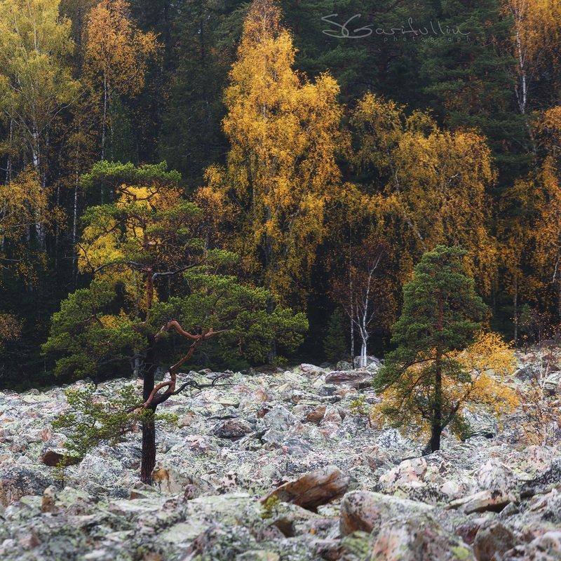 таганай, урал, южный урал, каменная река Уральская КАМЕННАЯ рекаphoto preview