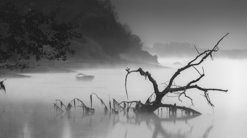 abstract, nature, blackwhite, bw, moody, boat, river, fog The ghostly harbourphoto preview