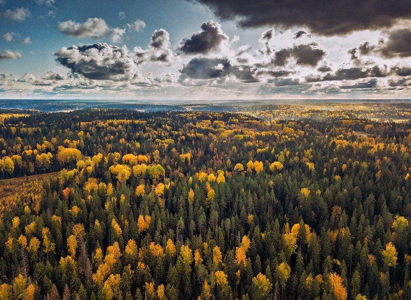 Октябрь во всей красе.photo preview