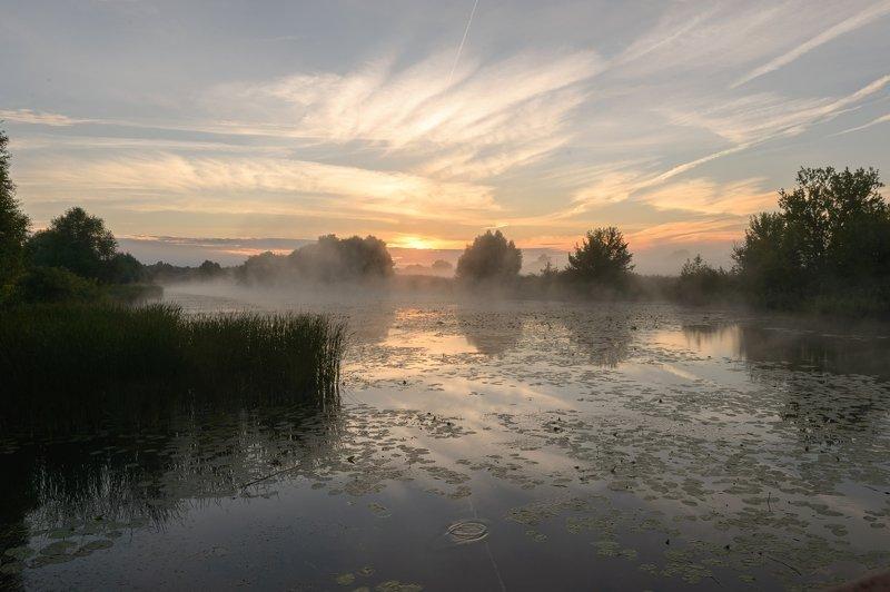 утро,природа,туман,пейзаж,россия,рассвет,красота \