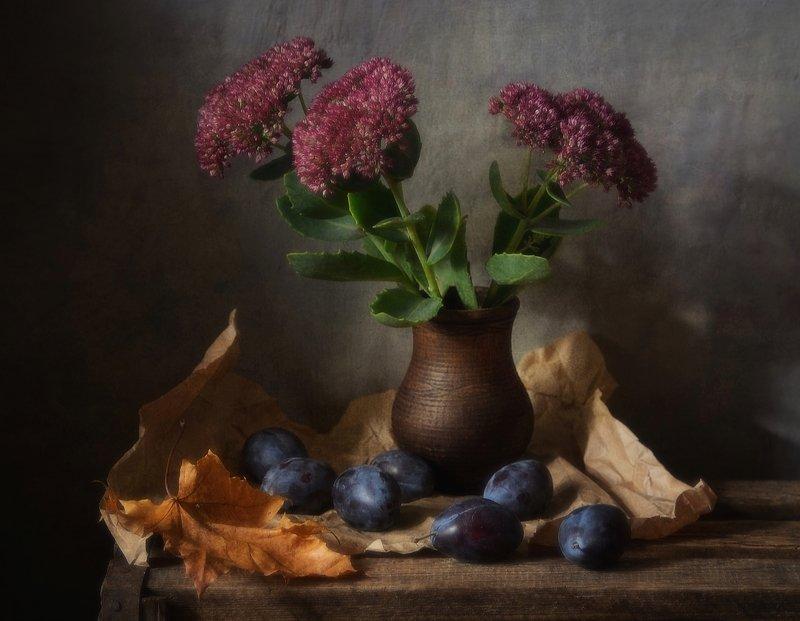 натюрморт,still life,очиток,осень,сливы с очитком и сливами...photo preview