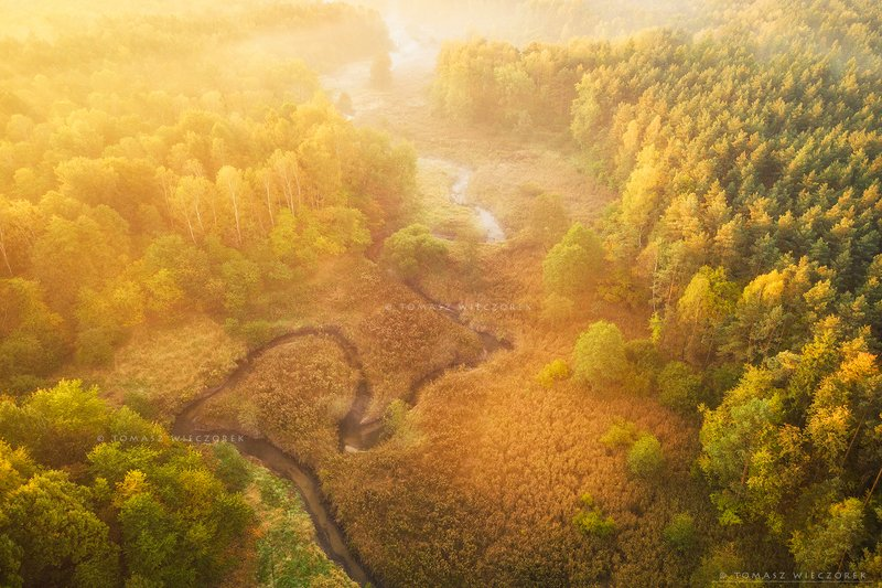 forest, drone, dji, air, poland, polish, landscape, sunrise, sunset, colours, autumn, awesome, amazing, adventure, travel, beautiful, morning, river, valley Autumn sunrise фото превью