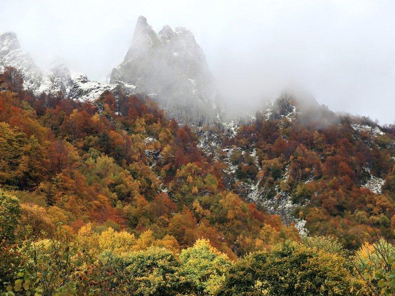 осень горы туман Октябрь.photo preview