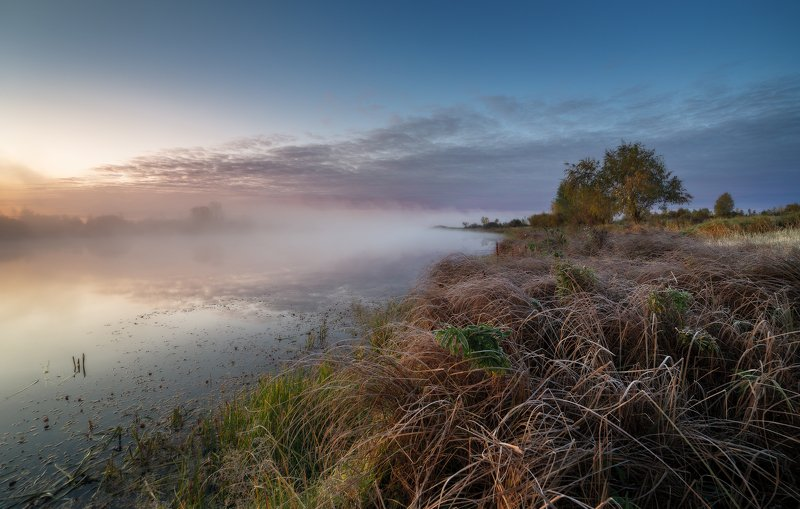утро, туман, иней, трава, озеро Иней на траве.photo preview