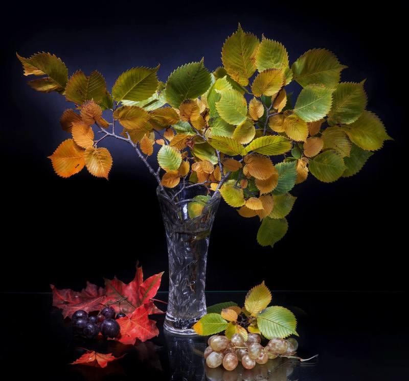Осеннее настоениеphoto preview