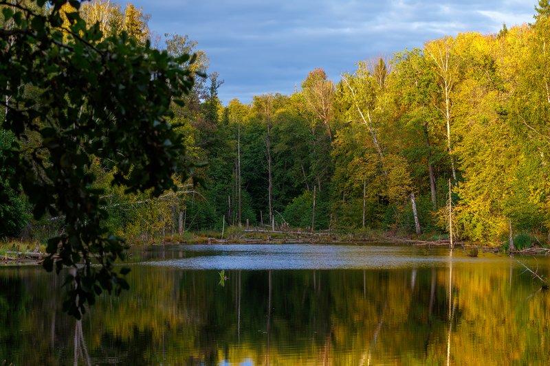пейзаж, озеро Золотая осеньphoto preview