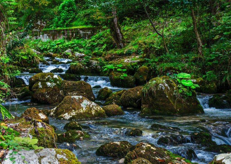 nevant60, пейзаж, красота, природа Река Псырдзхаphoto preview