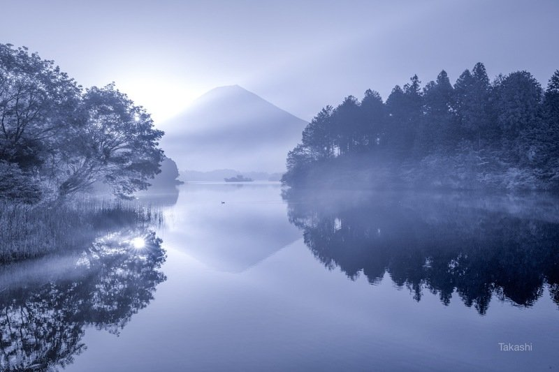 Fuji,mountain,Japan,haze,gas,reflection,water,lake,beautiful,blue,tree, Reflection in morning hazephoto preview