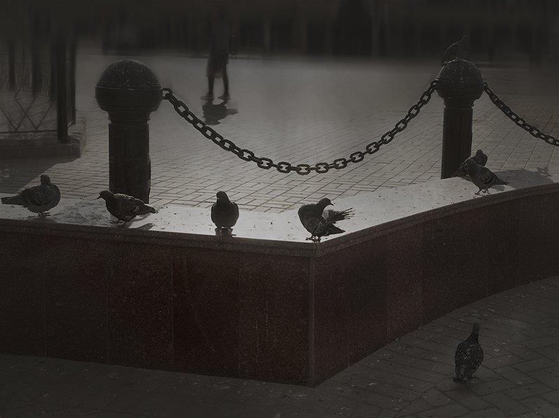 Казань. Стрит фото1photo preview