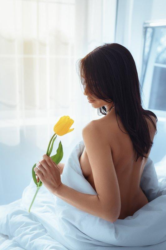 будуар, портрет, девушка, флора, тюльпан, утро, постель Morning tulipphoto preview
