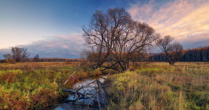 Незатейливый октябрьский пейзаж...photo preview