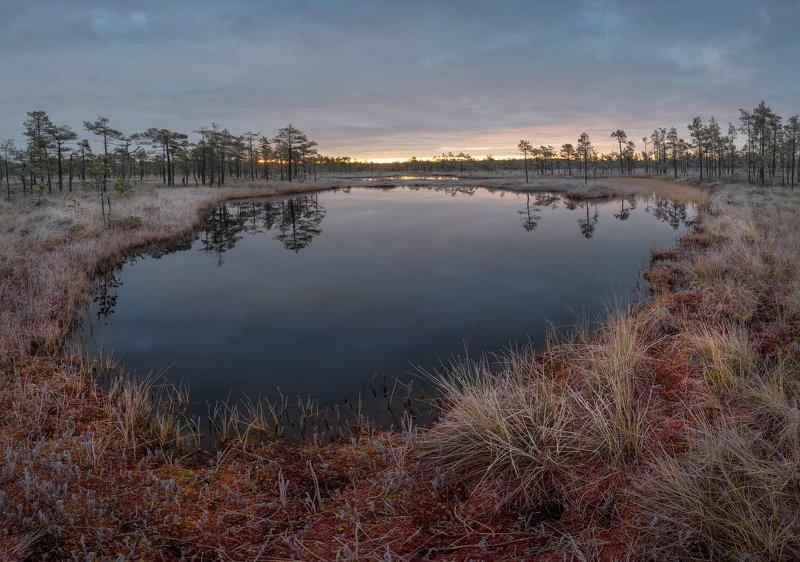 болото, кайф, рассвет ,север ,солнце, свет, закат, облака, отражение, фототур Морозным утром Октябряphoto preview
