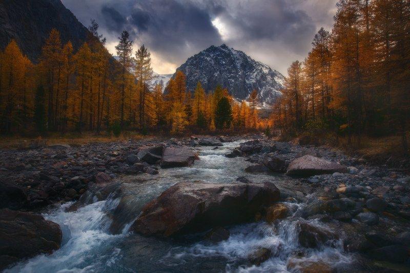 алтай, горы, актру Алтайская фото превью