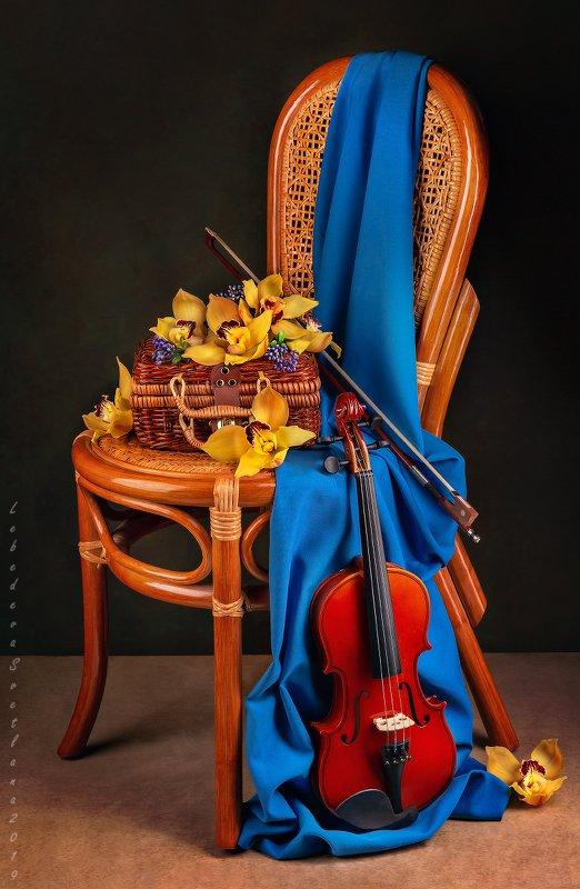 скрипка,стул,музыка,музыкальный,натюрморт,stilllife,натюрморт,орхидеи,цветы О скрипкеphoto preview
