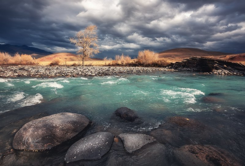 Алтай, Кызыл-Чин. фото превью