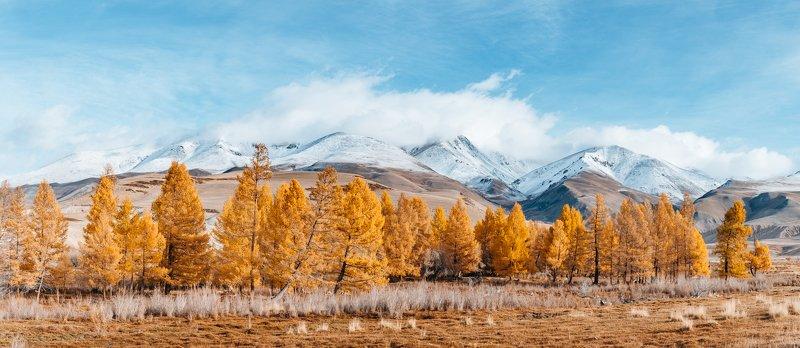 Алтай, осень, горы Утро в Чуйской степиphoto preview