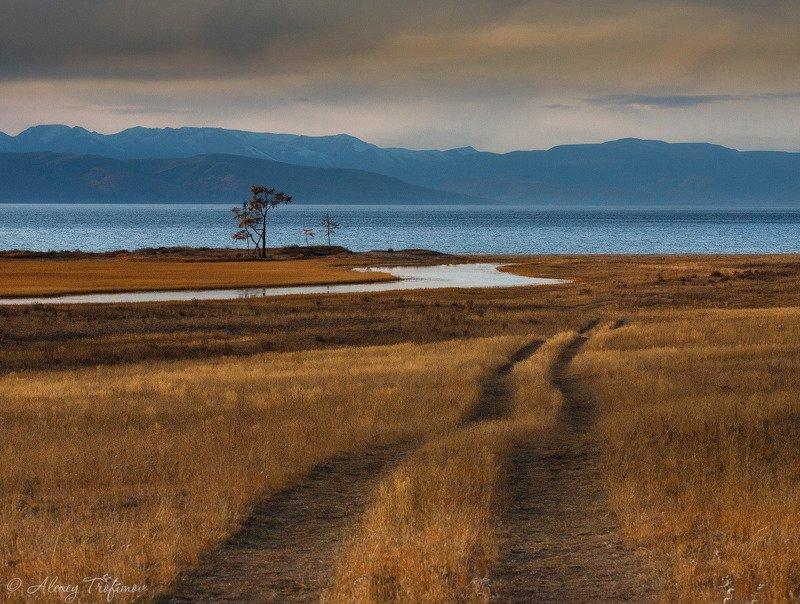 монголия, хубсугул, пейзаж, осень, дорога Там, где кончается дорога...photo preview