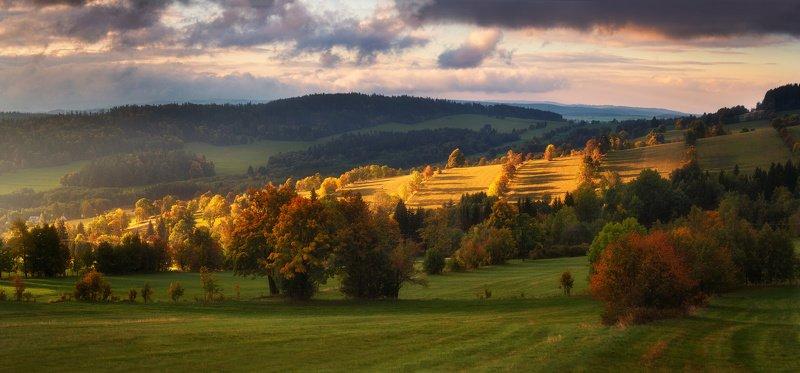 landscape, tree, sunrise, light Color of Autumnphoto preview