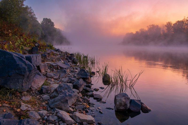 sunrise dawn landscape nature fog mist Туманное утроphoto preview