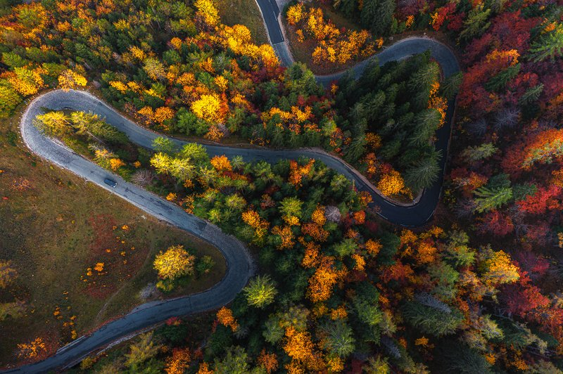 drone, aerial,dji,mavic2,slovenia,autumn labyrinth of coloursphoto preview