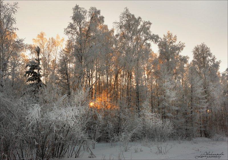 забайкальский край Морозphoto preview