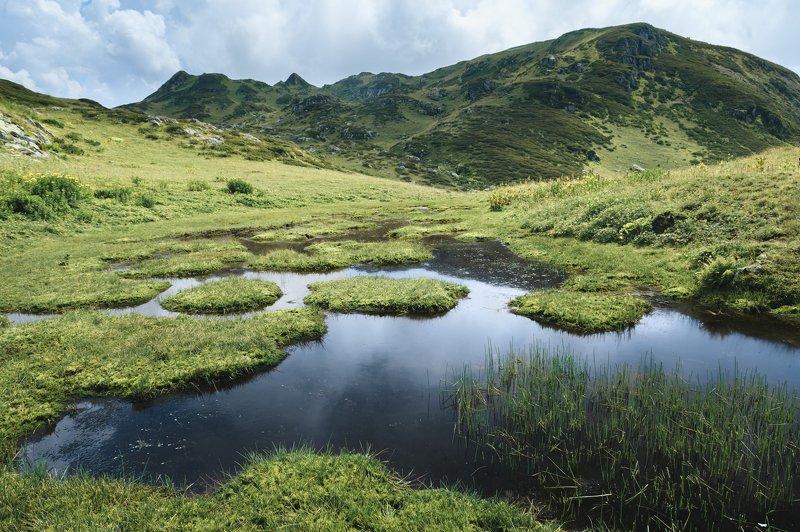 сочи, табунная, бзерпинский карниз Горное болотцеphoto preview