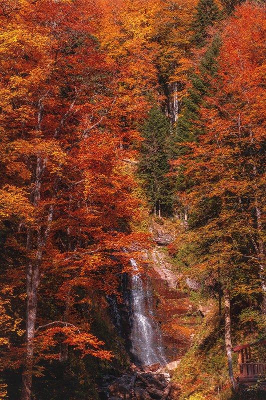 landscape, сочи, роза хутор, водопад, осень, вода, пейзаж, sochi, autumn, fall, waterfall Водопад Червонныйphoto preview