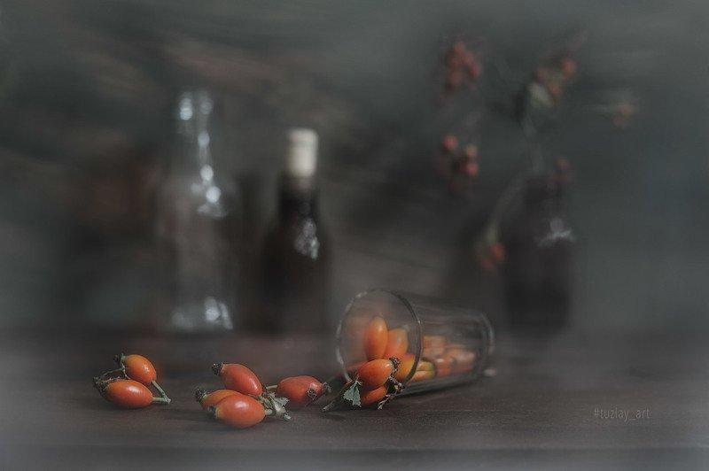 шиповник, боярышник, колючки, софт эффект Про рассыпанный шиповникphoto preview