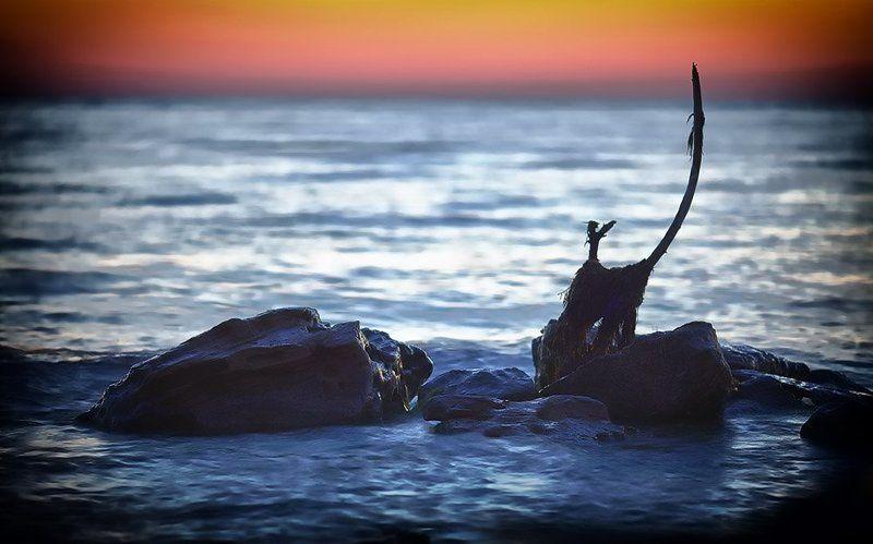 evening, sea, stone Eveningphoto preview