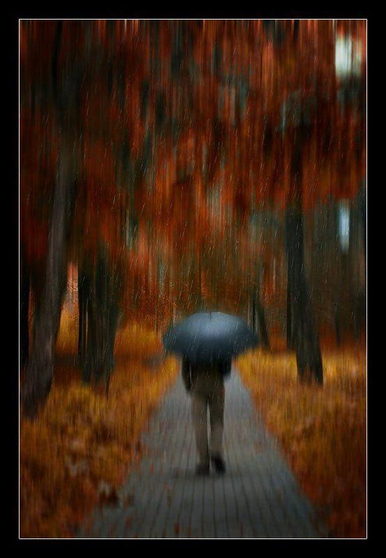 дождь, человек, под зонтом, осень, настроение Дождь, как и я...photo preview