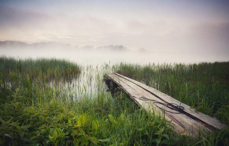 весна, утро, озеро, браслав, туман ...Про утро и туман...photo preview