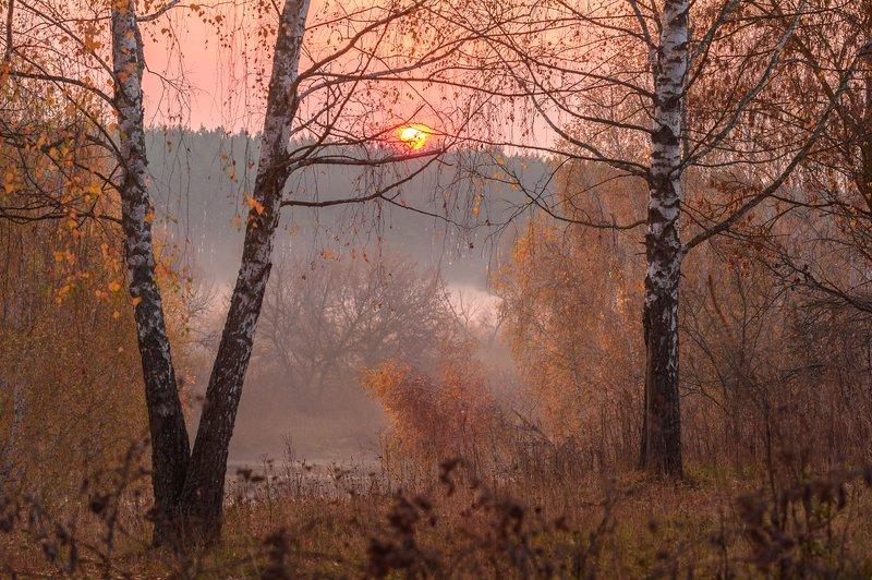 осень,октябрь,рассвет,природа,красота, \