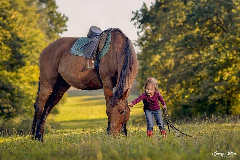 horse,nature,children, girl Horse and little girlphoto preview