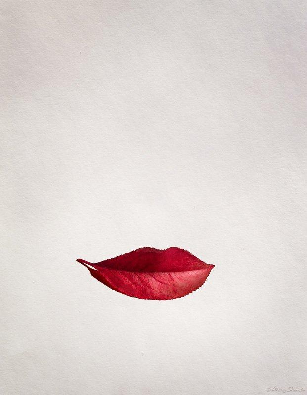 Красотка Осеньphoto preview