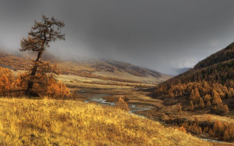 алтай, горный алтай, горы, сибирь, джазатор Октябрьphoto preview