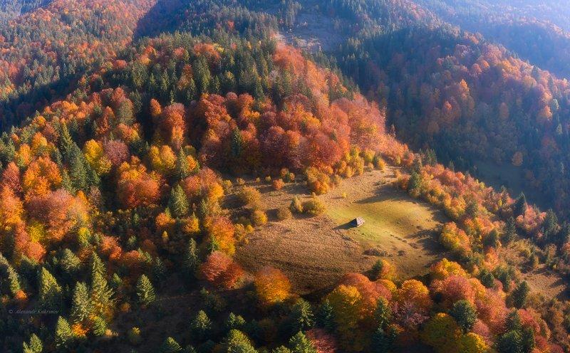 карпаты, осень, пейзаж В сердце осени...photo preview