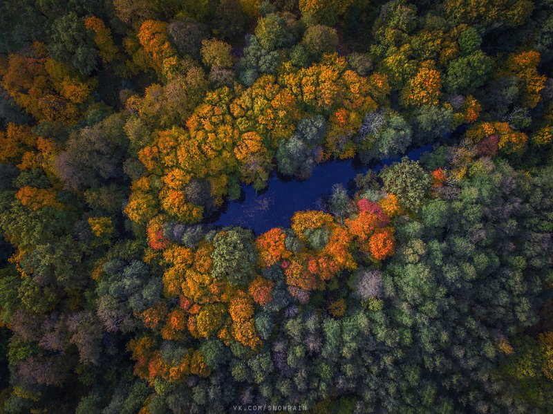 autumn, nature, aerial, drone, аэрофотосъемка, коптер, природа, пейзаж, landscape, осень, djiphantom Разноцветные берегаphoto preview