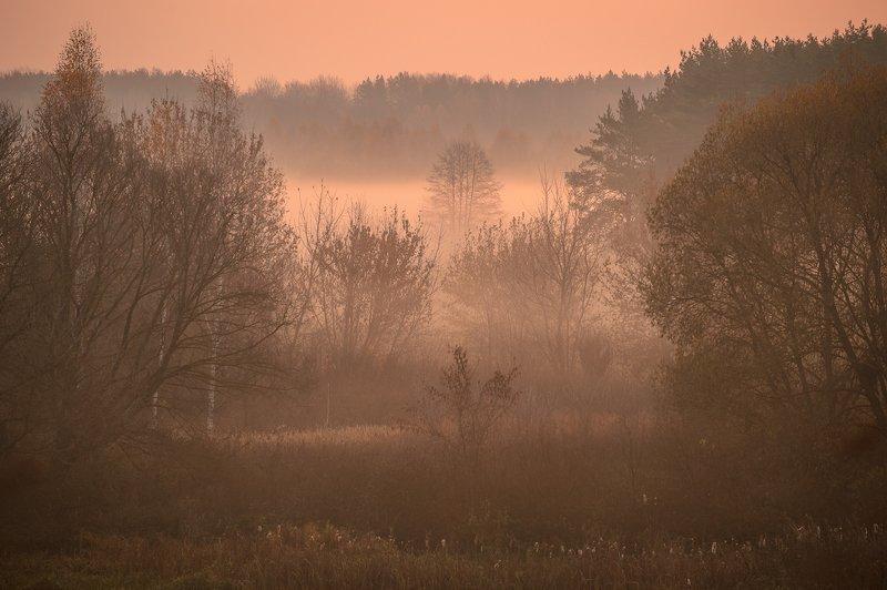 пейзаж,природа,осень,рассвет \
