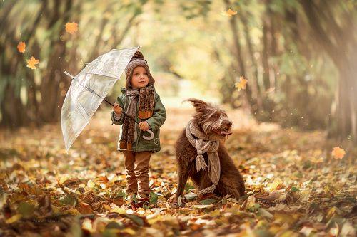 Настроение: Осень)