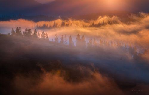 Туманный свет Карпат...