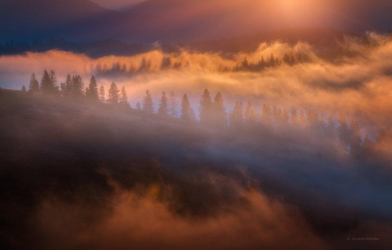 карпаты, осень, пейзаж, утро, рассвет, туман Туманный свет Карпат...photo preview