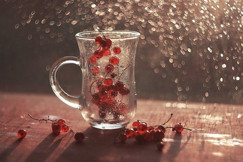 осенние ягодыphoto preview